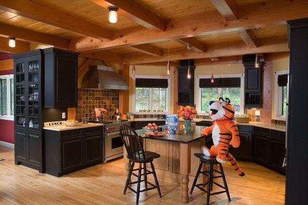 Celebrated Snowboarder Mountain Home Design Living Vt
