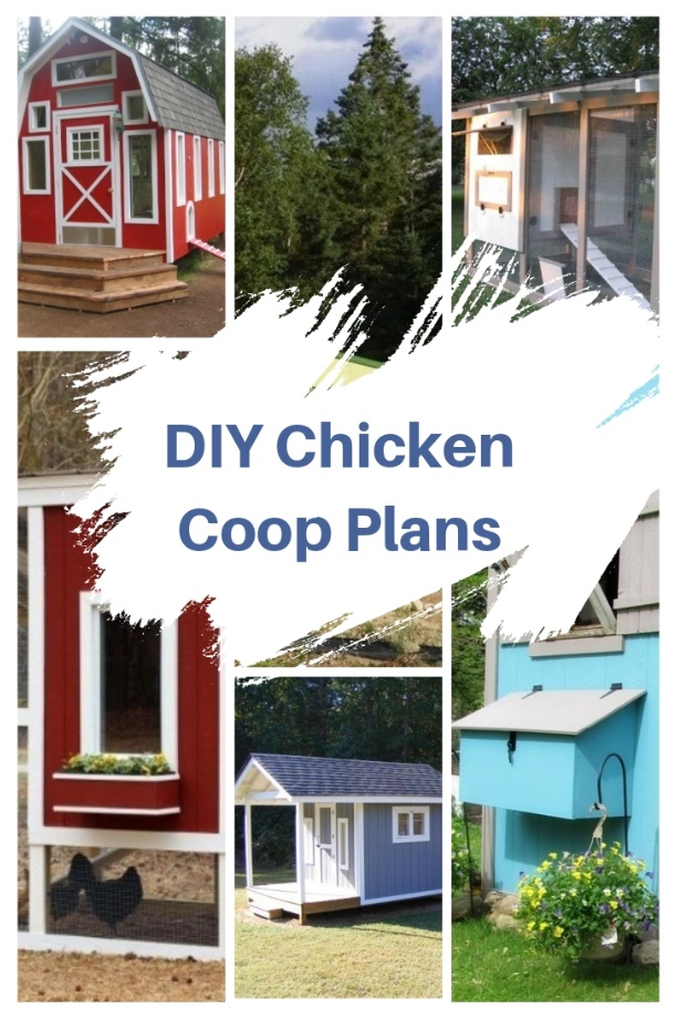 20 Best Easy Diy Chicken Coop Plans You Can Build