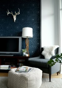 Why Dark Walls Work in Small Spaces  Design*Sponge