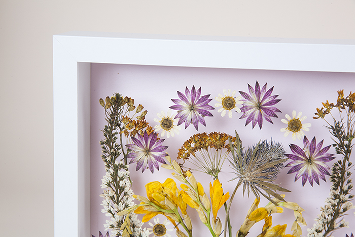 DIY Pressed Flower Wall Art by Jessica Marquez for Design Sponge