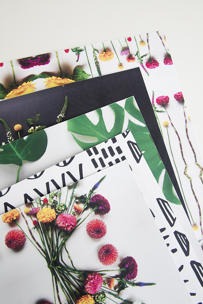 DIY Laptop Skin Using images from your smartphone by Jessica Marquez for Design Sponge