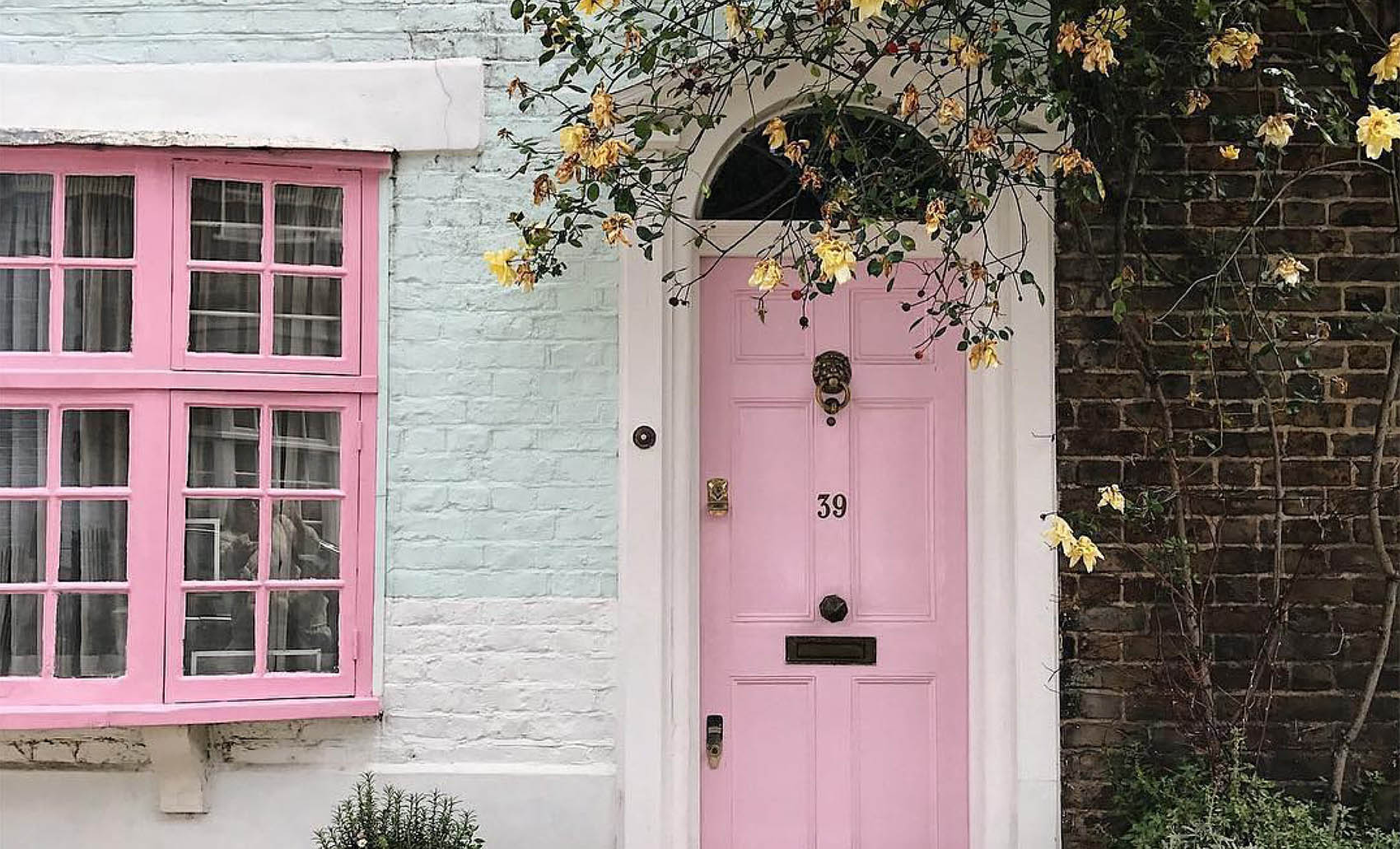 Image result for pink doors