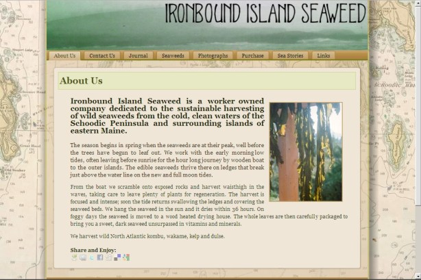 site_ironboundisland