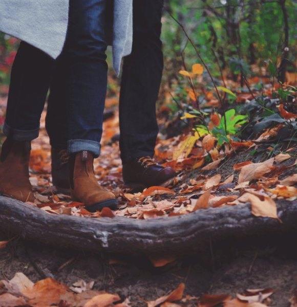 What will be you doing this Autumn?