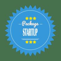 6 Professional Custom Logo Designs for $98 by 2 Designers