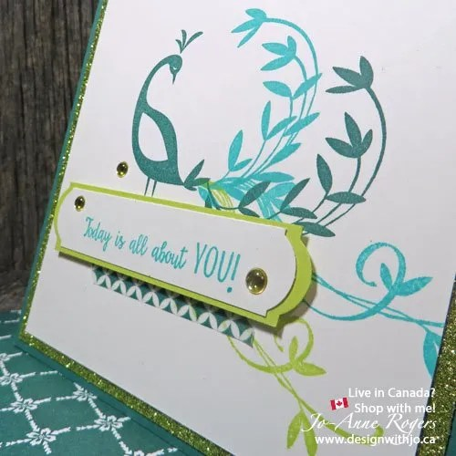 stampin up beautiful peacock