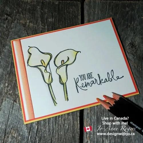 watercolour pencil art cards