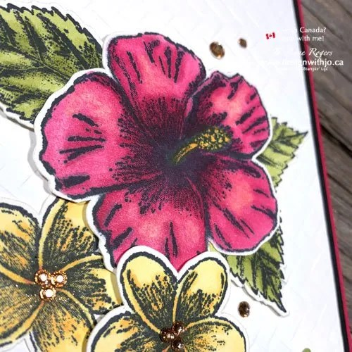 Try This Cool Alcohol Marker Technique for Gorgeous Cards with Timeless Tropical stamps