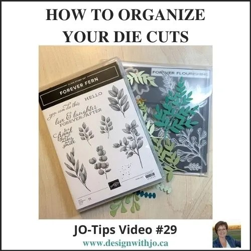 VIDEO How to Organize Your Die Cuts