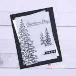 I Love These Classy Christmas Card Papers from Stampin