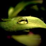15 Incredible Photography Roundups