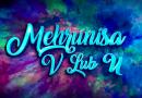 Pakistani Movie Mehrunisa V Lub U First Look