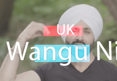Europe Te UK Wangu by SUKSHINDER SHINDA (2017)