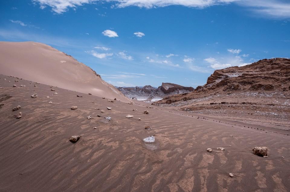Da oversvømmelse (og vi) kom til Atacama-ørkenen