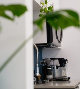 coffee-and-plants