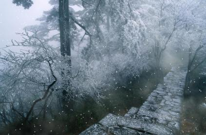 Rain And Snow Animated Wallpaper Preview