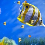 Marine Life Aquarium Animated Wallpaper