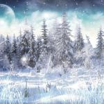 Winter Snow Animated Wallpaper