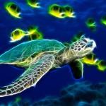 Sea Turtle Animated Wallpaper