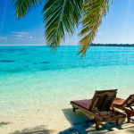 Tropical Beach Animated Wallpaper