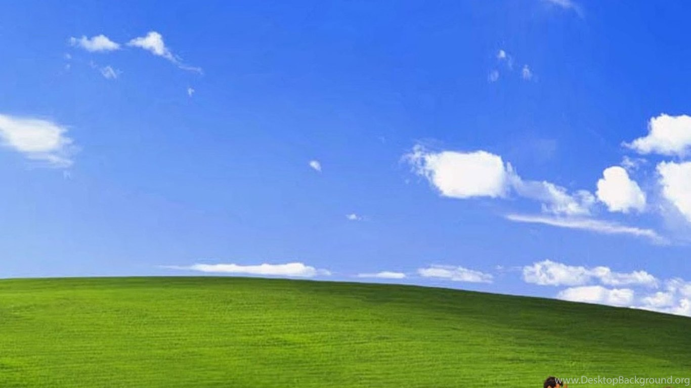 Funny Wallpapers For Iphone 3gs Funny Bliss Windows Xp Ipad 3 4 Amp Air Wallpapers Desktop
