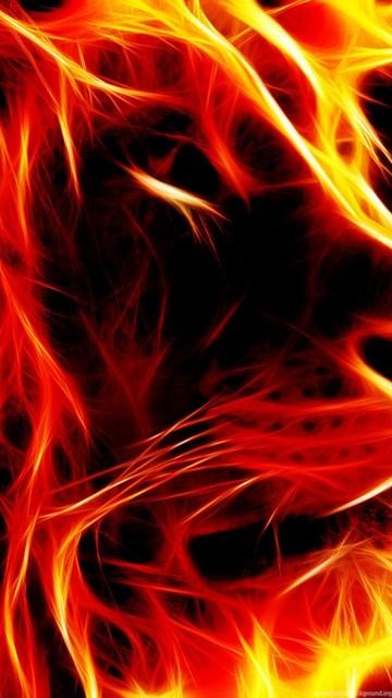 Zen Iphone 6 Wallpaper Download 2560x1600 3d Lion Wallpapers Fire Desktop Background