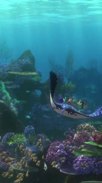 Your Name Wallpaper Iphone X Finding Nemo Animation Underwater Sea Ocean Tropical Fish