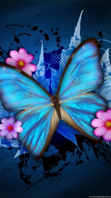 Cute Wallpapers For Your Tablet Cute Butterfly Wallpapers Hd Wallpapers Pretty Desktop