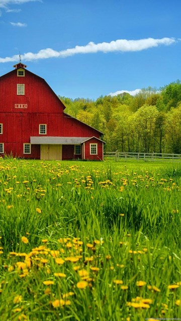 Iphone 5c Color Wallpaper Countryside Wallpapers Desktop Background