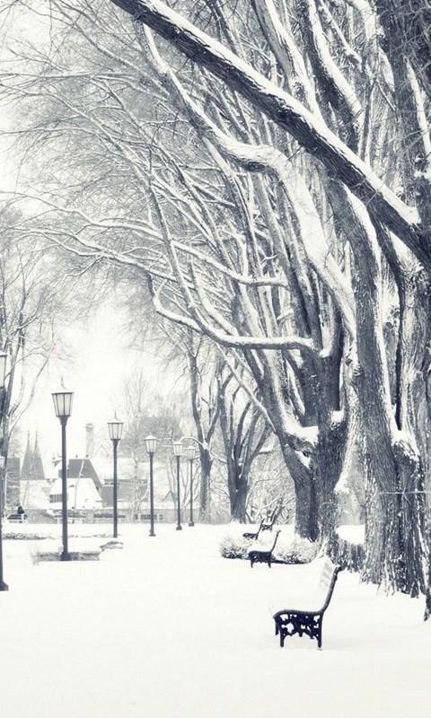 Falling Snow Wallpaper For Ipad Snow Falling Hd Wallpapers Desktop Background