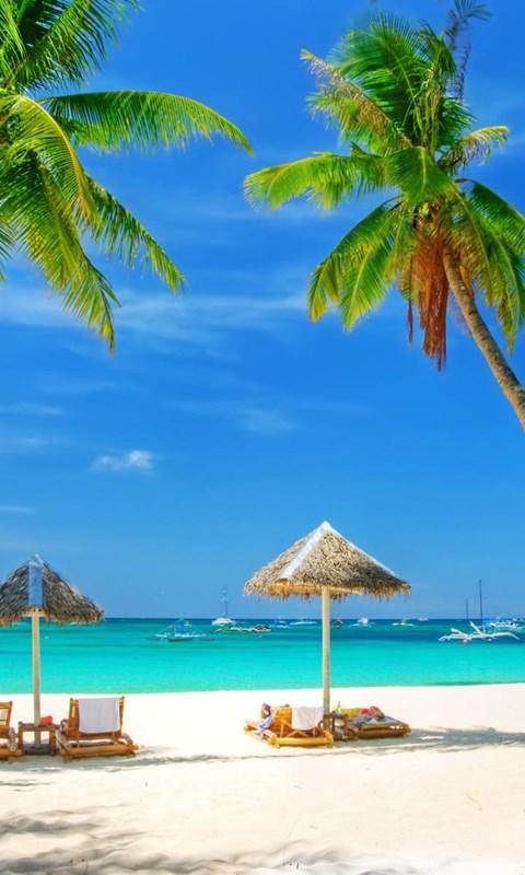 Tropical Beach Background Hd Wallpaper Jpeg Desktop Background