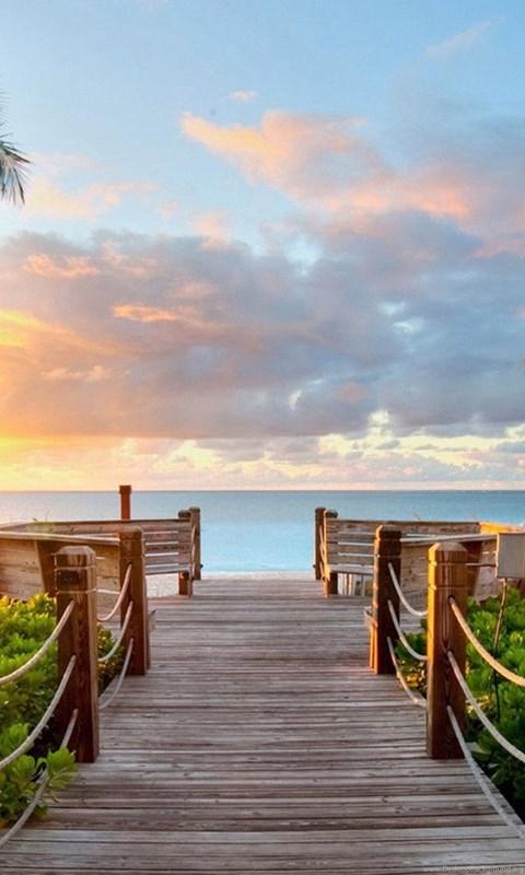 Binary Code Wallpaper Hd Tropical Summer Beach And View Of The Sea Bridge