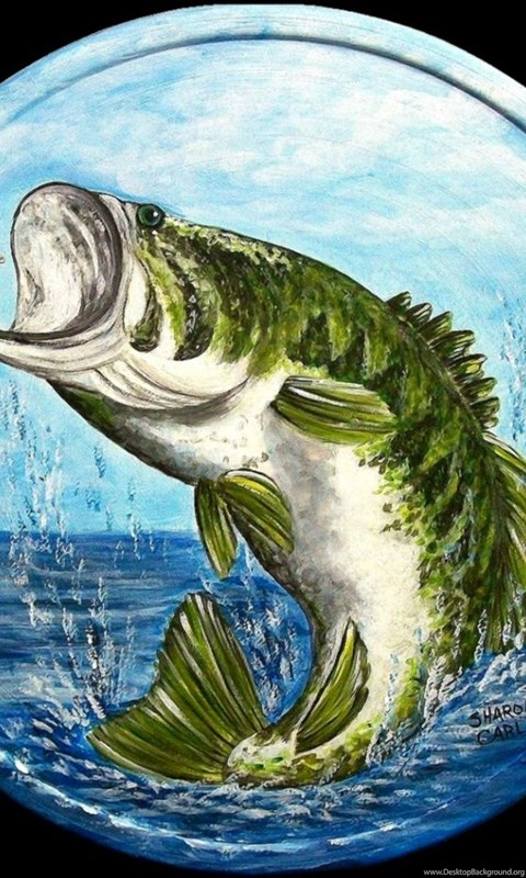 Your Name Wallpaper Iphone X Largemouth Bass Jumping Painting Desktop Background