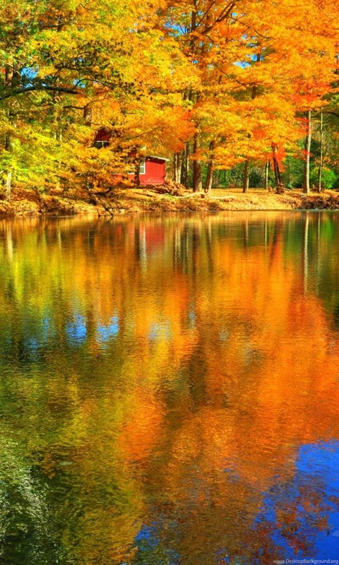 Fall Of The Autumn Hd Wallpaper Lakes Autumn Reflections Forest Lake Colors Water Fall