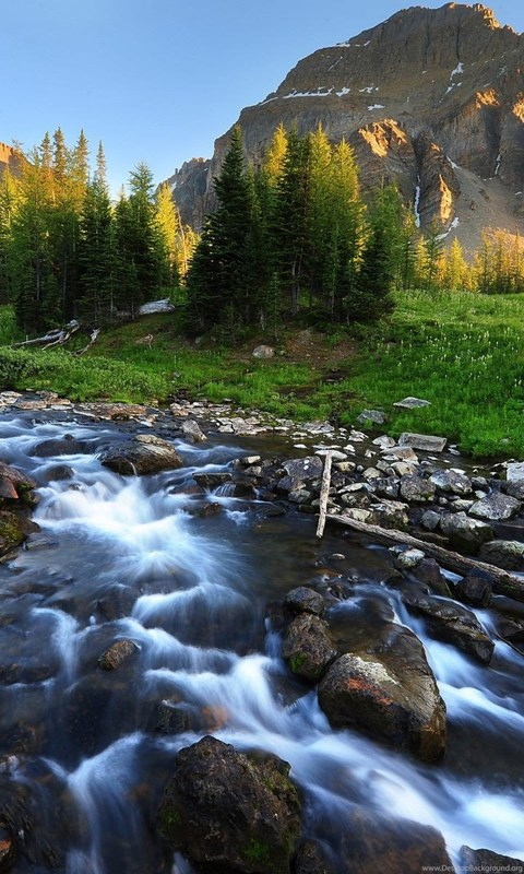 Iphone 4s Wallpaper Hd Download Mountain Stream Beautiful Scenery Wallpapers Hd Download