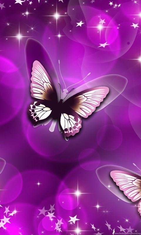 Iphone X Wallpaper Size Butterfly Purple Art Wallpaper Jpg Lupus In Color