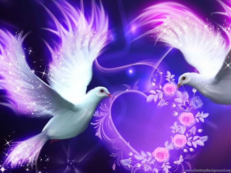 The Fall Bbc Wallpaper Beautiful Love Birds Nokia Lumia 520 Hd Wallpapers Love