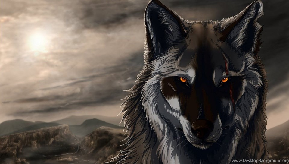 cool anime wolf images