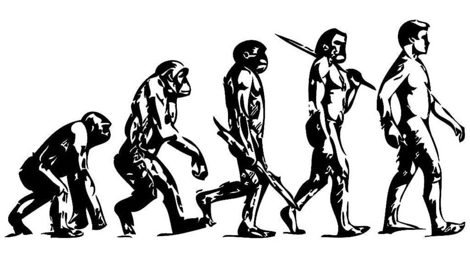 Download Index Of /wallpaper/evolution Evolution Of Man