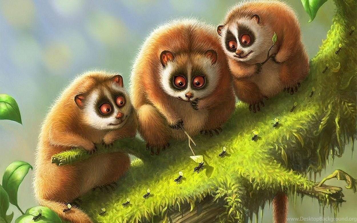 Cute Nature Animals Wallpapers Hd 254 Full Hd Wallpapers Desktop Desktop Background