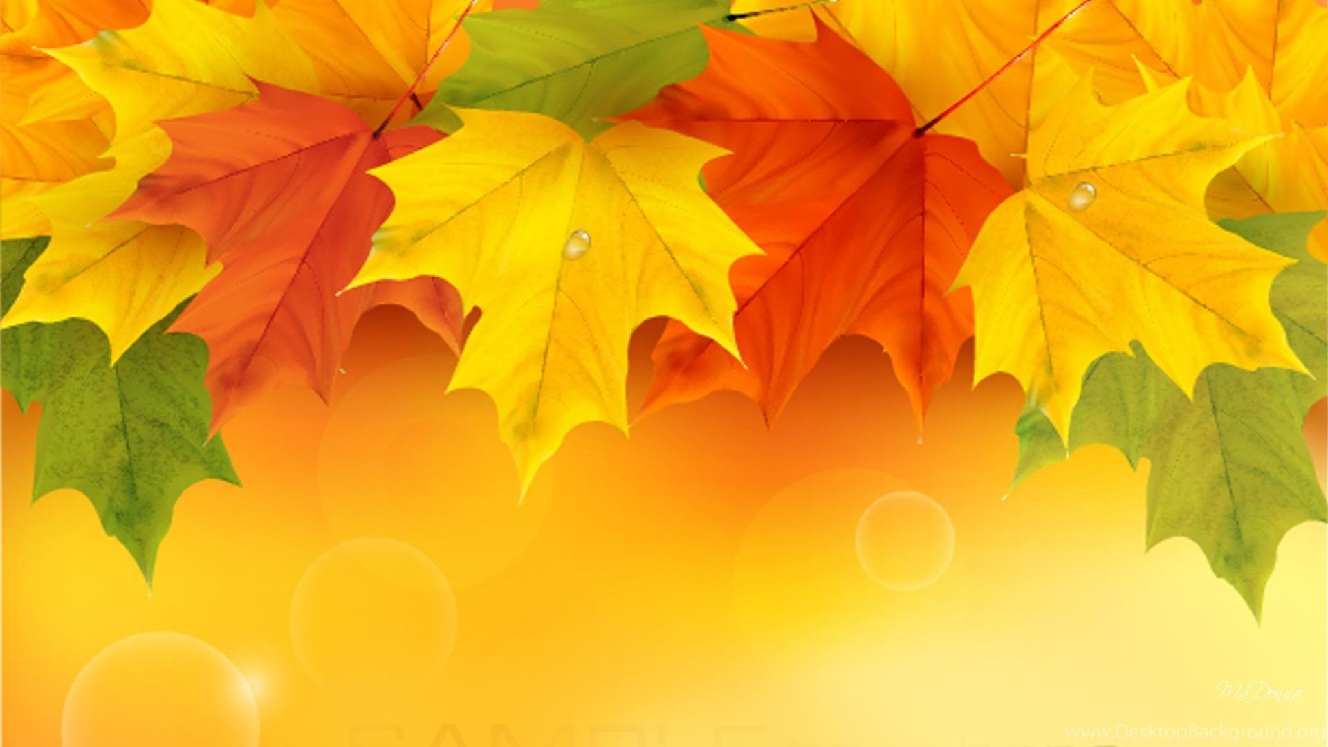 Free Fall Wallpaper For Iphone 5 Maple Leaf Wallpapers High Resolution 11136 Pacify Mind