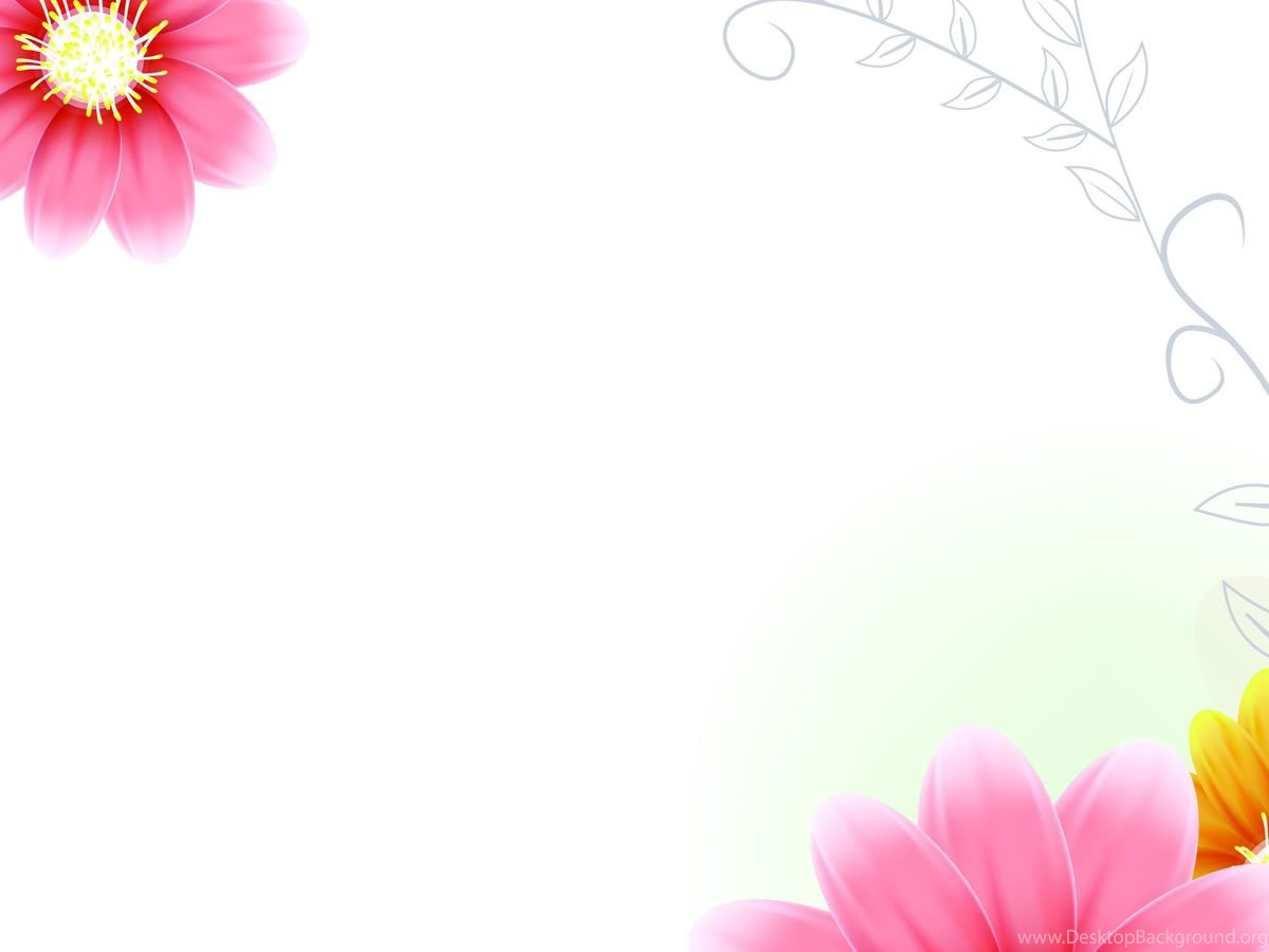 Hello Kitty Pink Cute Wallpaper Bergerak Poppy Flower Wallpapers Free Download Wallpapers Hd For