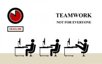 True Funny Wallpapers Team Work In An Office Desktop ...