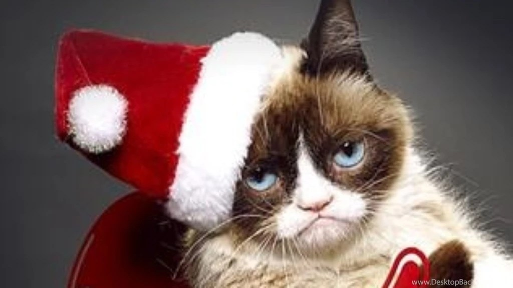 The Cute Wallpapers Ever For Computer Grumpy Cats Worst Christmas Ever Wallpapers High