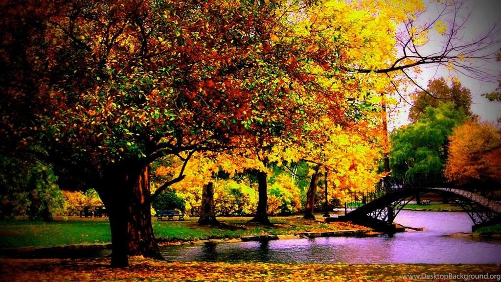 The Fall Bbc Wallpaper Free Autumn Desktop Backgrounds 1600 215 1000 High