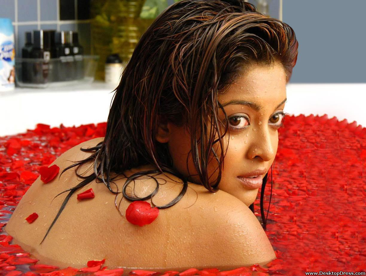 Amisha Patel 3d Wallpaper Desktop Wallpapers 187 Tanushree Dutta Backgrounds