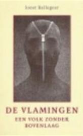 De Vlamingen - J. Ballegeer - (ISBN: 9789077723241) | De Slegte
