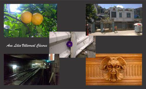 Túneles, toronjas y detalles en puertas que nos cuestionan...