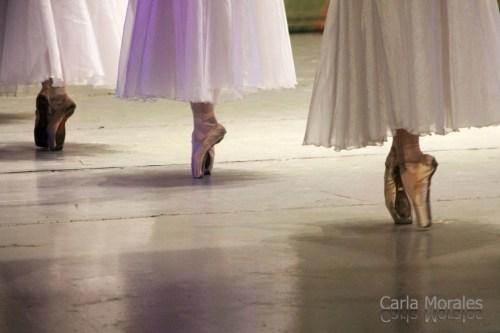 danza_carla-morales