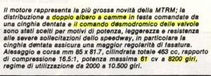 mazzucato2